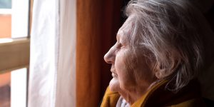 The New Horizons Seniors Program offered to support 703,339 vulnerable seniors during the pandemic through 937 programs offered by a network of 876 community agencies across Canada.
